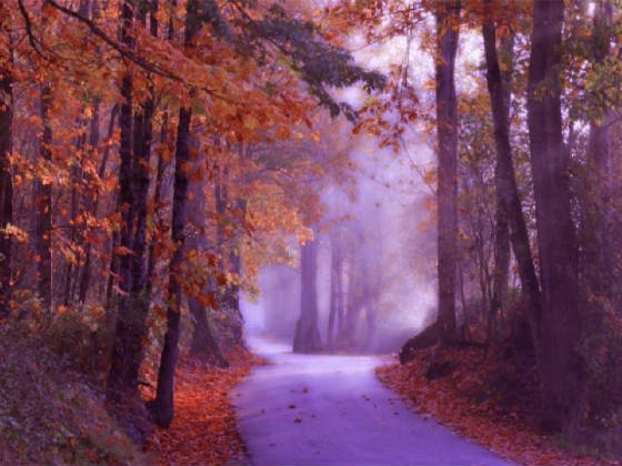 autumnbeautiful-autumn-02.jpg